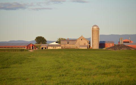 Realteilung einer landwirtschaften Mitunternehmerschaft - und da Verpächterwahlrecht