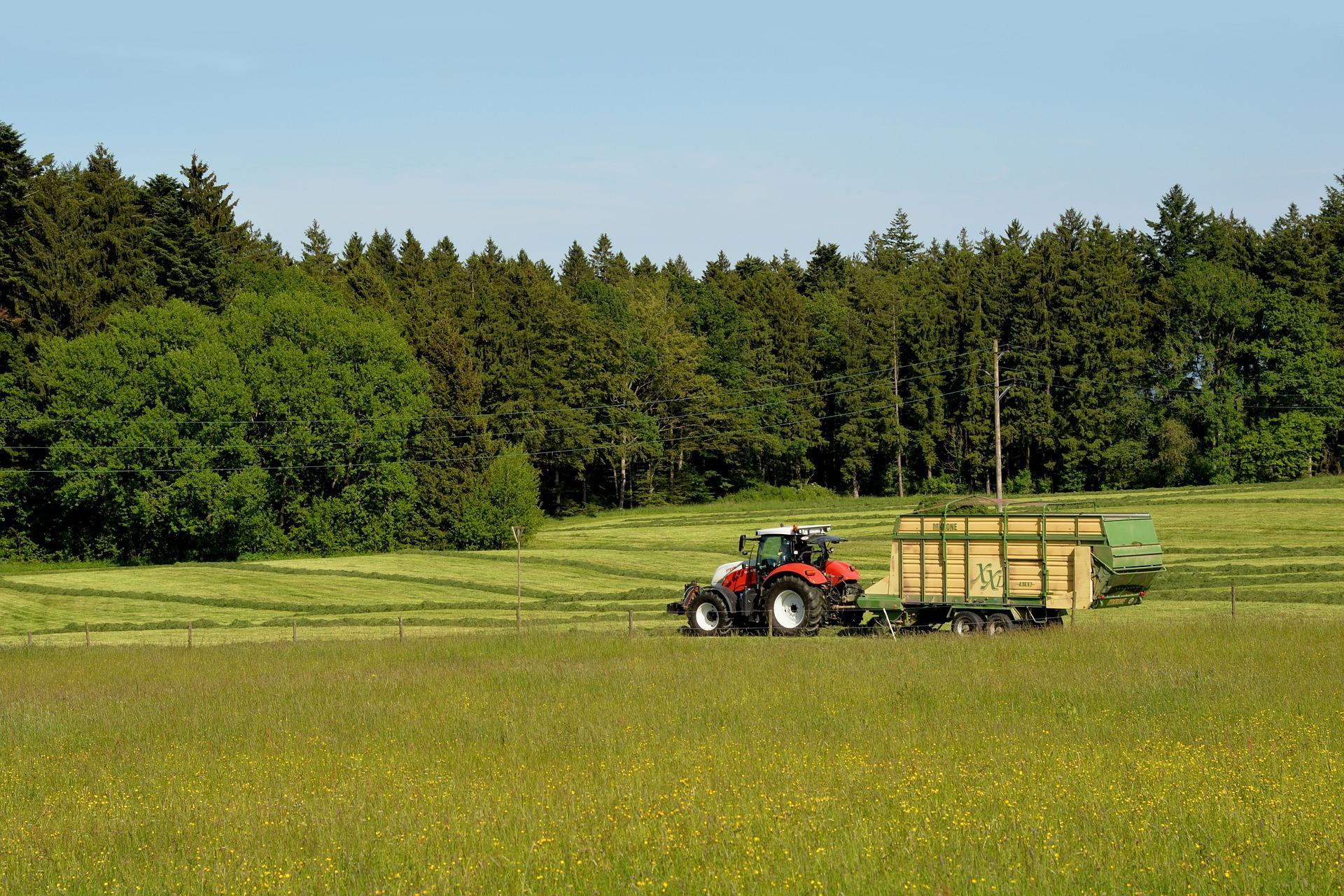 Milchanlieferungsquote in der Insolvenz des Milchbauern