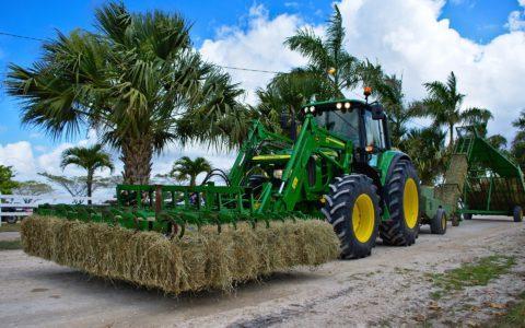 Alterssicherung der Landwirte - und die Hofabgabepflicht