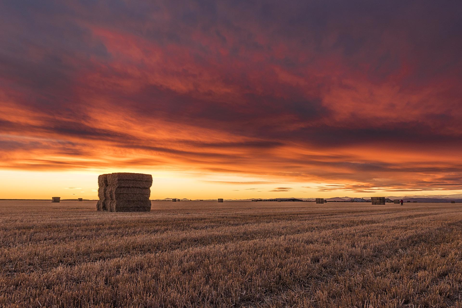 Nach dem Erbanfall veräußerte  landwirtschaftliche Grundstücke - und der Grundbesitzwert