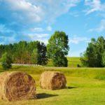 Das Grundstück für den weichenden Erben - und die Grunderwerbsteuer