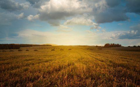 Betriebsneugründung - und der Ankauf von Wirtschaftsflächen