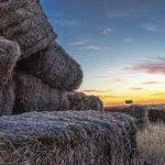 Relevante Rechtsgebiete in der Landwirtschaft