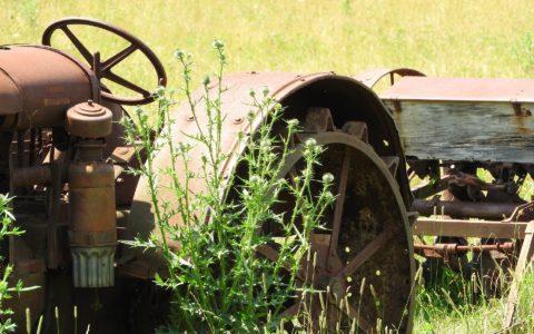 Begründung einer konkludenten Mitunternehmerschaft bei Landwirtsehegatten