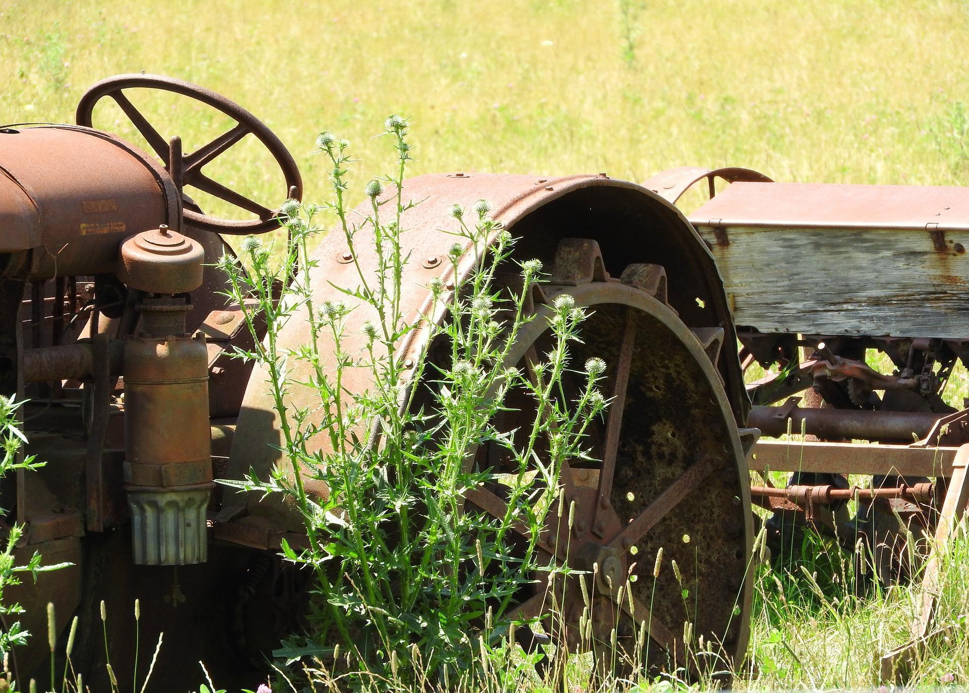 Schadensersatzpflicht der Schlachthöfe wegen CMA-Beiträgen