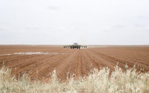 Verpachtung landwirtschaftlicher Grundstücke - und das siedlungsrechtliche Vorkaufsrecht