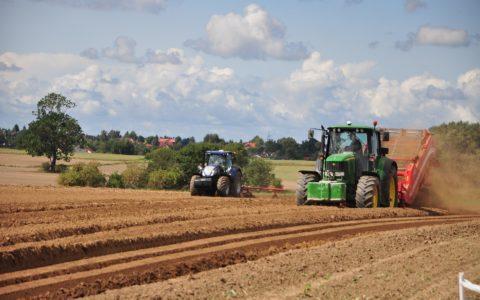Grundstücksverkehrsgenehmigung - und der Wert des Grundstücks
